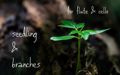 Recording Release – Lisa Neher's Seedling & Branches